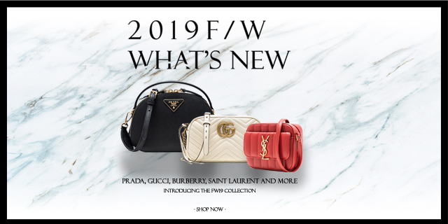 2019 F/W WHAT'S NEW