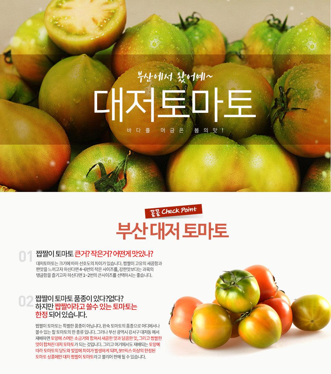 ● 부산 대저 토마토 축제●