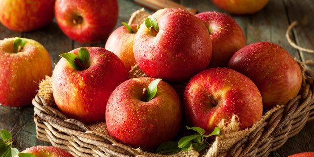 매일 아침 金사과
