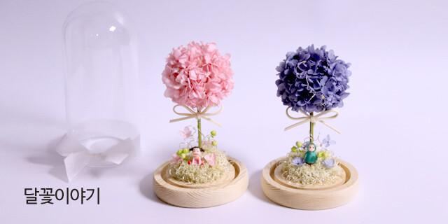 [달꽃이야기] 꽃이주는 모든 행복